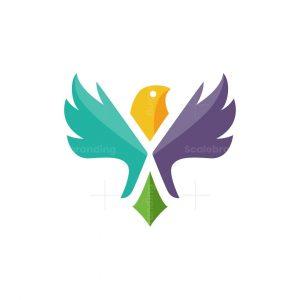 Colorful Dove Logo