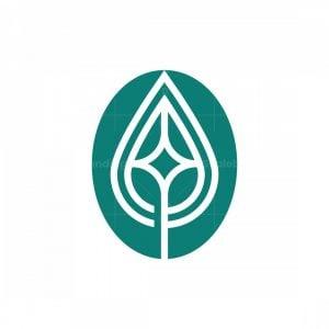 Leaf Star Logo