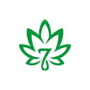 Seven Cannabis Leaf Logo