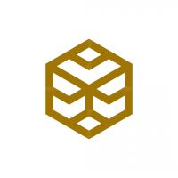 Geometry Head Lion Box Logo