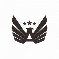 Winged A Eagle Logo