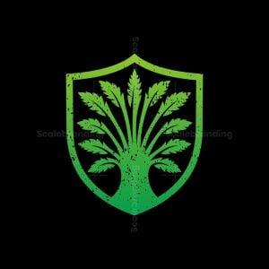 Shield Tree Oak Logo