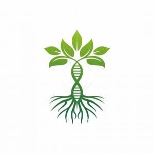 Dna Tree Logo