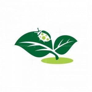 Beetle Nature Logo