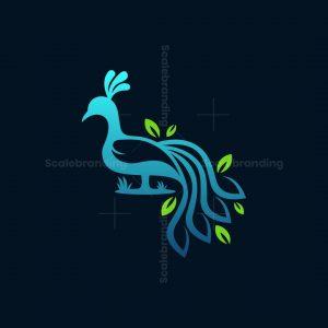 Peacock Leaf Nature Logo