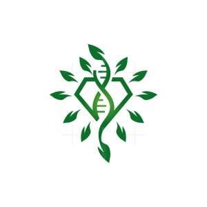 Dna Diamond Logo
