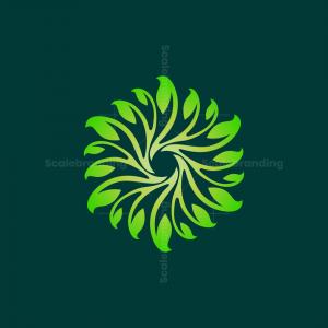 Photography Leaf Lens Logo