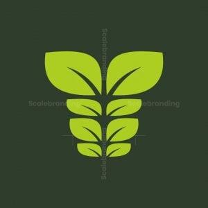 Sixpack Nature Logo
