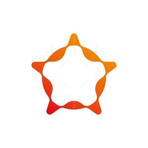 Star Software Logo