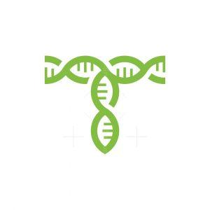 T Letter Dna Logo