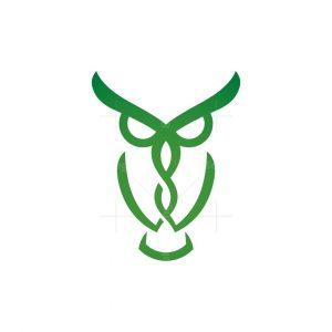 Medical Owl Logo Pharmacy Owl Logo