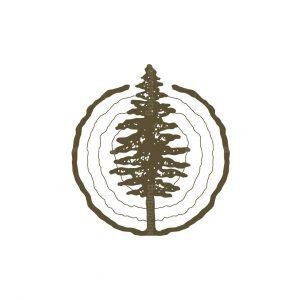 Pine Tree Wood Logo