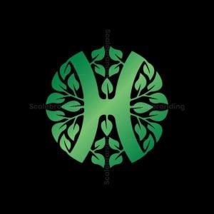 Healthy H Leaf Logo