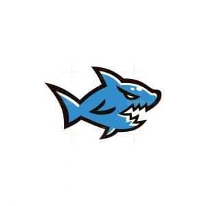Shark Team Logo