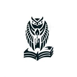 Wizard Book And Owl Logo
