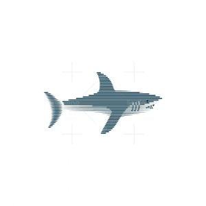 Shark Engraved Logo