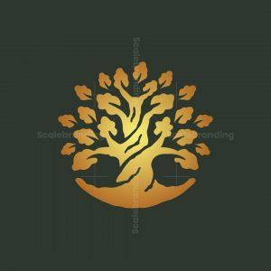 Gold Oak Tree Logo