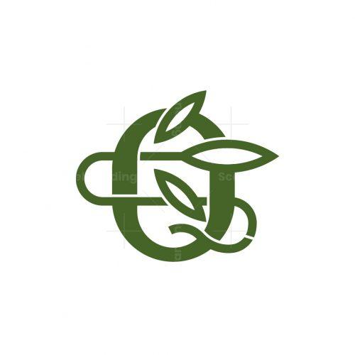 Letter Q Cannabis Logo