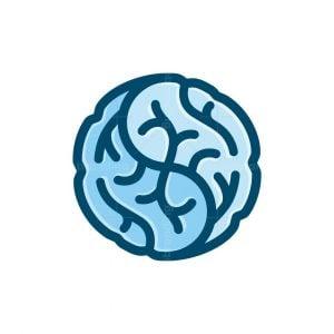 Brain Doctor Logo