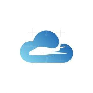 Cloud Airplane Logo