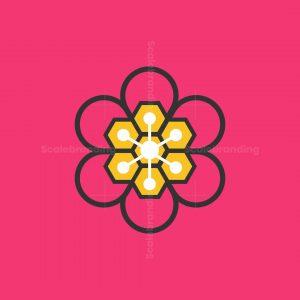 Flowers Bee Hive Logo