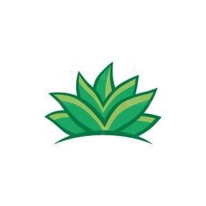 Green Aloe Logo