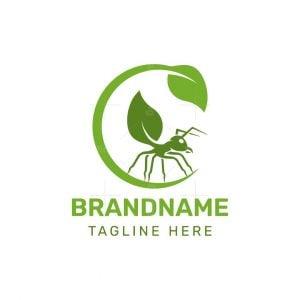 Nature Ant Logo
