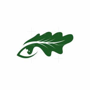 Oak Eye Logo