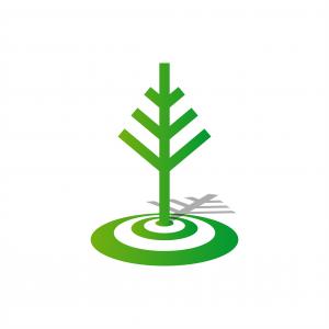 Point Tree Logo
