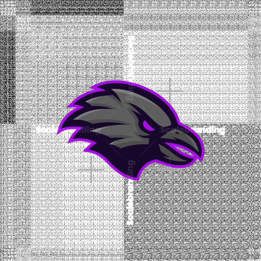 Raven Esport Mascot Logo