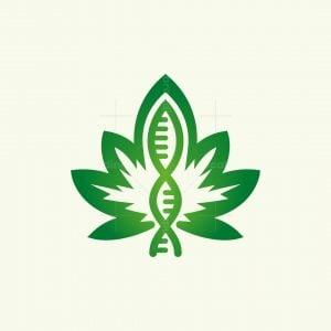 Cannabis Dna Logo