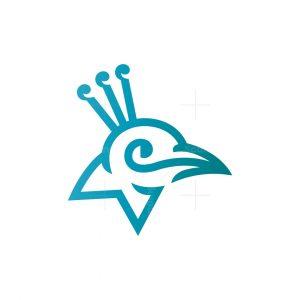 Peacock Logo Peacock Head Logo