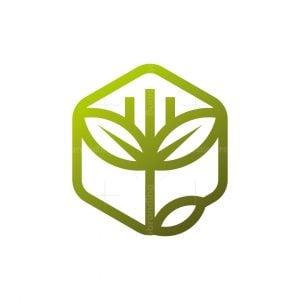 Hexagon Plant Logo