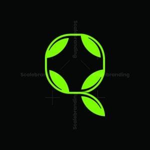 Nature Letter Q Logo